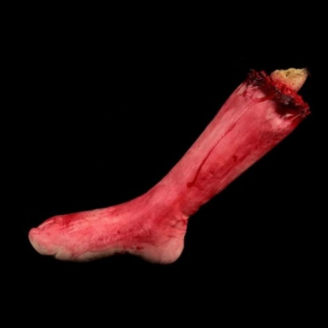 Halloween Horror Props Bloody Feet Haunted House Party Decoration Scary Faked Human Arm Finger Leg Foot