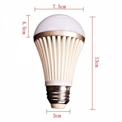 E26 5W 85-265V 300 Lumens 6000K SMD5050 21 LED Ball Bulb