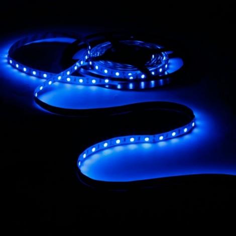 36W SMD5050 5m 300LEDs Blue Light LED Light Strip (White Lamp Plate) (12V)
