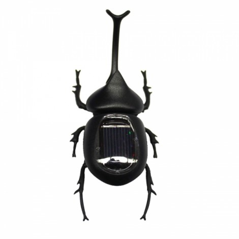 Solar Powered Beetle Toy Black