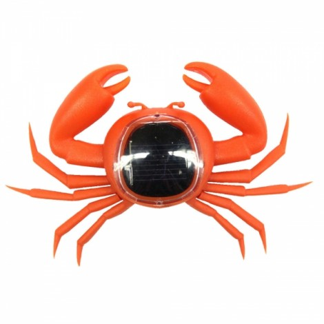 Solar Powered Crab Toy Orange