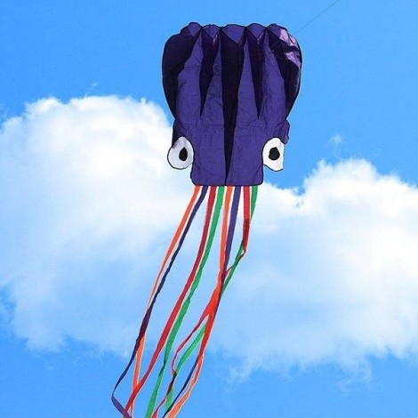 4m Octopus Soft Flying Kite with 200m Line Kite Reel Purple Head + Colorful Tail