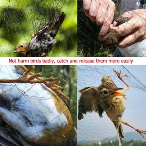 6 x 2M Nylon Mesh Garden Fruit Vegetable Plant Anti Bird Net Black