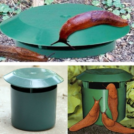 Vegetable Garden Safe Snail Trap Physics Environmental Limax Snail Slug Trapper Green
