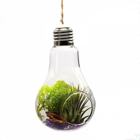 Home Office Wedding Decor Glass Bulb Shape Flower Water Plant Hanging Vase One Hole with Rope