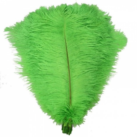 10pcs 12-14 Inch 30-35cm Natural Ostrich Feathers Party Wedding Decoration Green