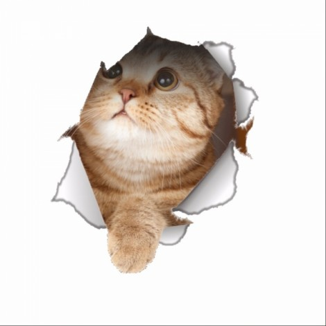 3D Hole View Vivid Cat Dog Waterproof Wall Sticker Bathroom Toilet Refrigerator Animal Decal Decoration - #4