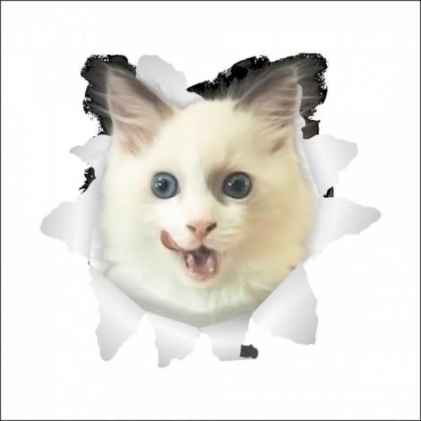 3D Hole View Vivid Cat Dog Waterproof Wall Sticker Bathroom Toilet Refrigerator Animal Decal Decoration - #8