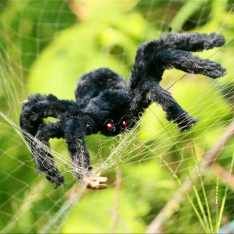 30cm Halloween Bar KTV Decoration Big Plush Funny Tricky Toy Spider Black