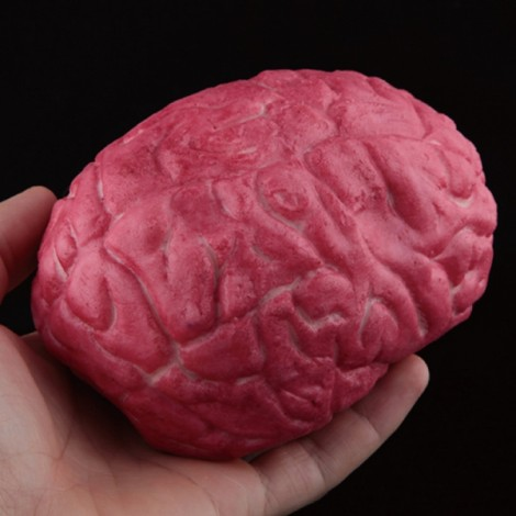 Halloween Horror Props Fake Brain Haunted House Party Decoration Scary Faked Human Arm Finger Leg Foot
