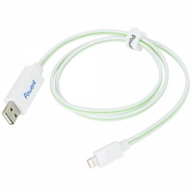 80cm MFi Power4 Visible Glowing 8-Pin to USB 2.0 Charge Sync Data Cable for iPhone/iPad/iPod White with Green Light