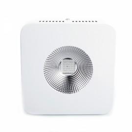 200W COB Full Spectrum Indoor LED Grow Light US Standard White