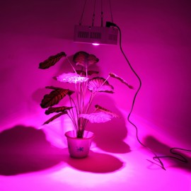 64*3W COB Integrated Chip with Lens Full Spectrum LED Grow Light White