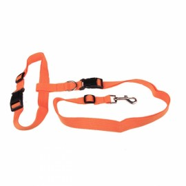 Morning Running Use Pet Dog Leash Running Jogging Puppy Dog Lead Collar Orange