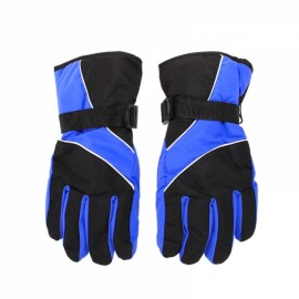 Winter Warm Windproof Waterproof Gloves for Outdoor Sports Mountain Skiing Snowboard Cycling Royalblue