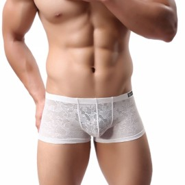 Sexy Breathable Lace Men