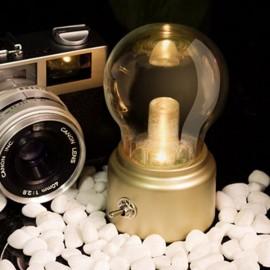 Retro 10W LED USB Rechargeable Globe Light Bulb Table Lamp Golden Base