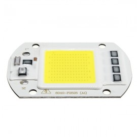 50W 1800LM LED Flood Light DIY COB Chip Bulb Bead 60x40mm AC220V White Light