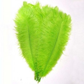 "10pcs 10-12"" Natural Ostrich Feathers for Party Wedding Decoration - Fruit Green"