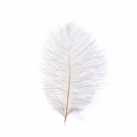 "10pcs  7.9""  White Natural Ostrich Feathers"