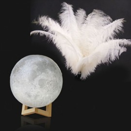 10 PCS Ostrich Feathers Party Wedding Decoration & 3D Printing Moon Lamp