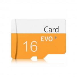 TF / Micro SD Card with Card Sleeve