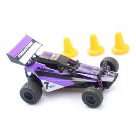 Topwin CTW168 2.4G 1:32 Sale 2WD 20km/h High Speed RC Car Purple