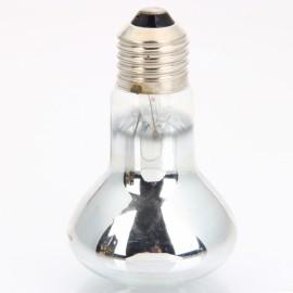 Glass & Aluminium Reptile UVA Day Heat Light 220V 60W Silver & Transparent