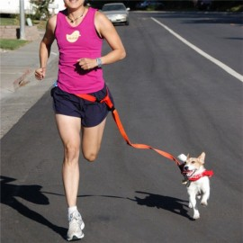 Morning Running Use Pet Dog Leash Running Jogging Puppy Dog Lead Collar Red