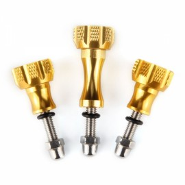 Ultra-Fit Accessories Stainless Steel Bolt Screw -Gold