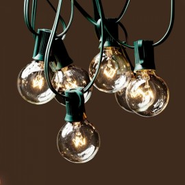 G40 String Hanging Lights w/ 25 Clear Globe Bulbs US 110V - Green